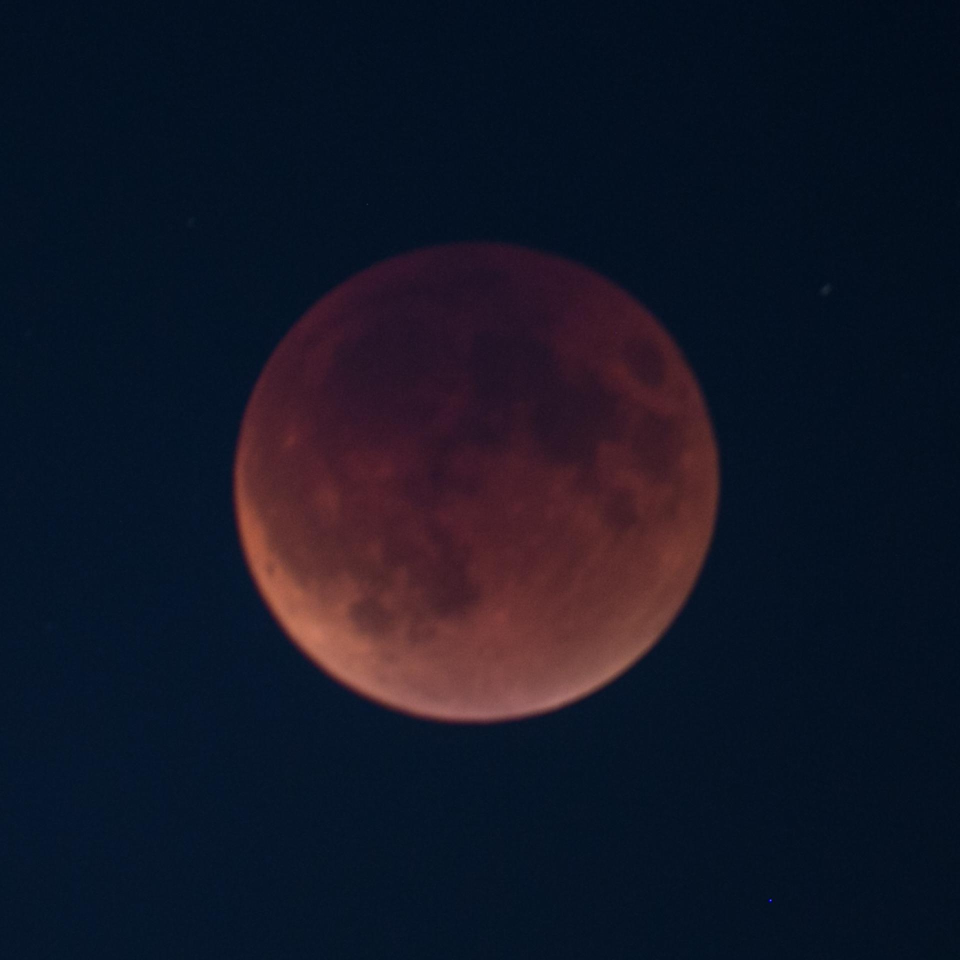Reifel Moon Eclipse-28.jpg