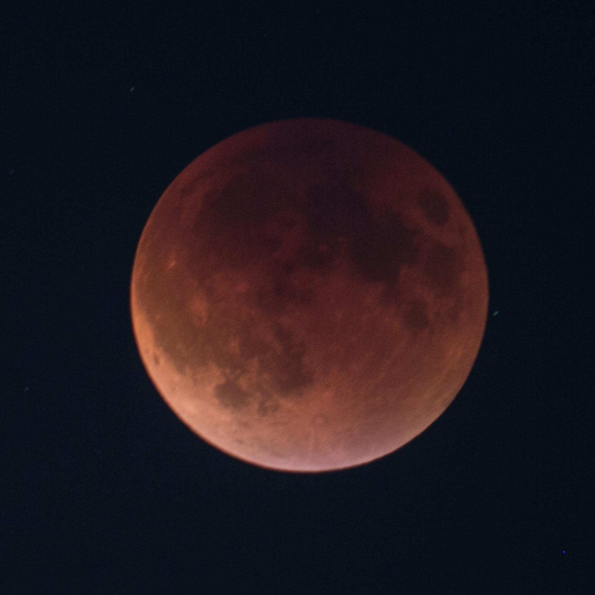 Reifel Moon Eclipse-29.jpg