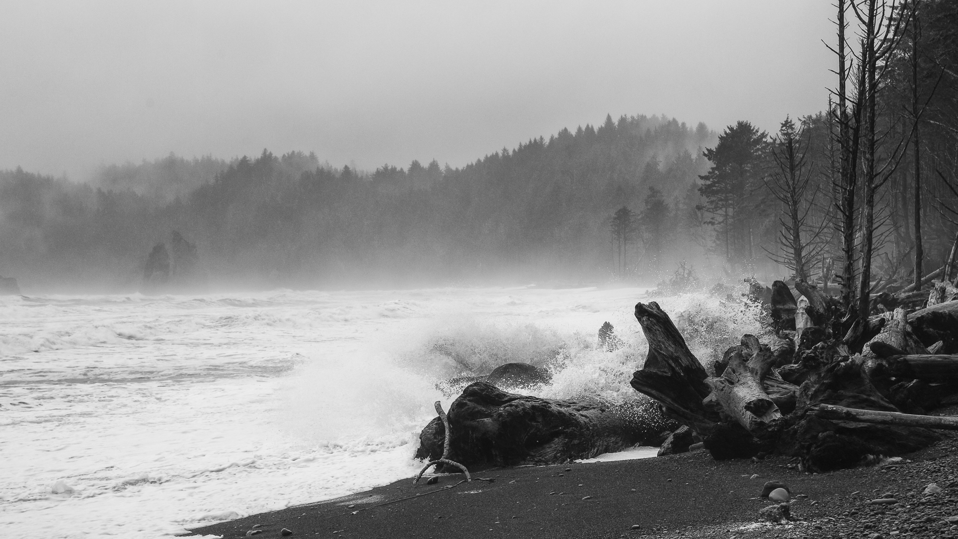 Waves crashing on Rialto Beach.