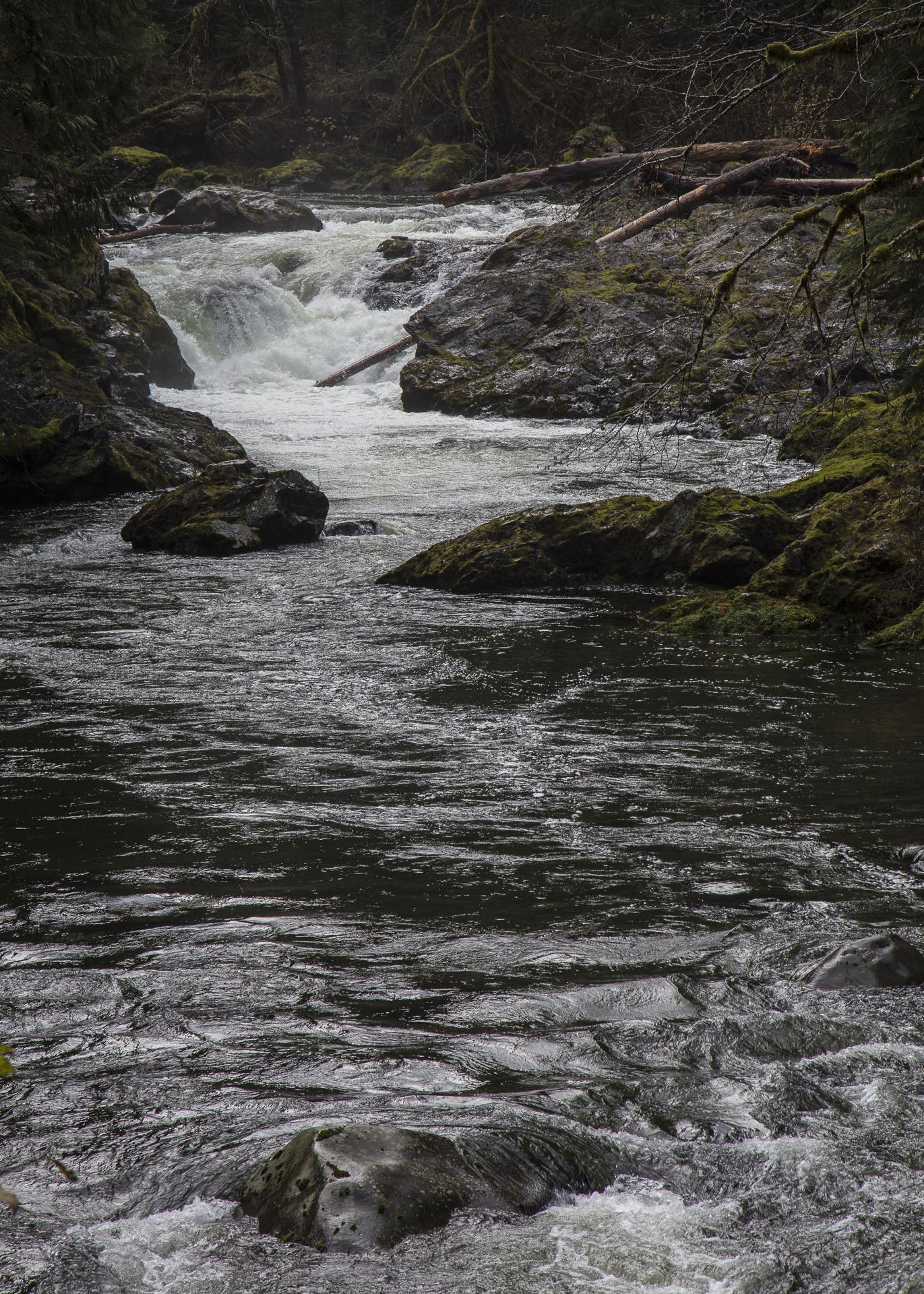 Salmon Cascades