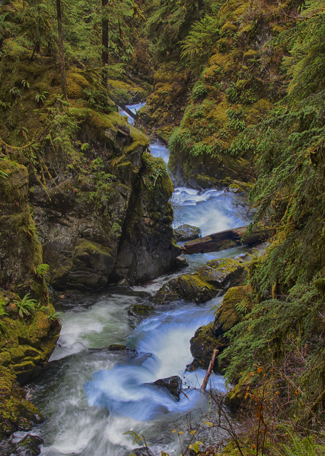 The river rushing away from Sol Duc Falls