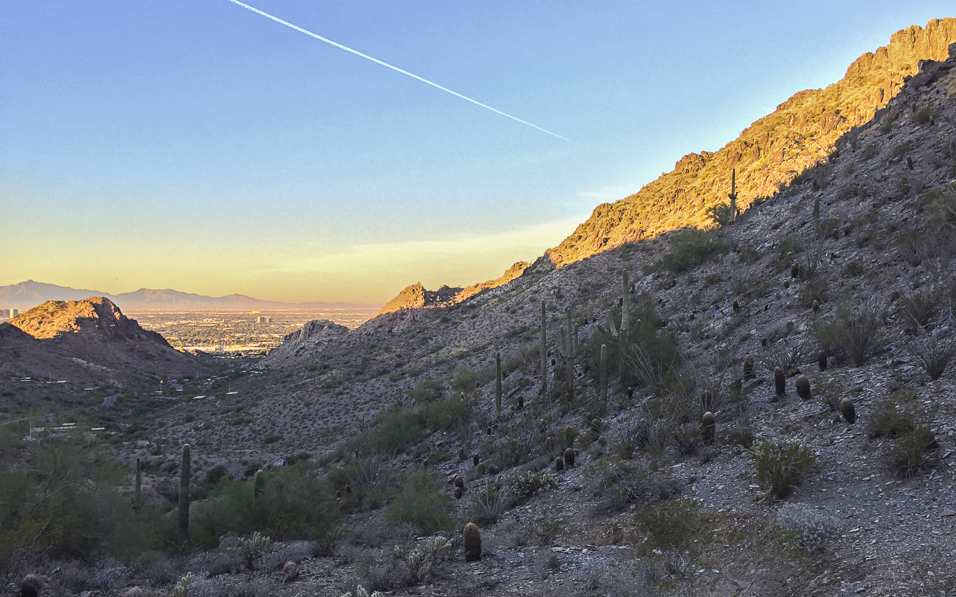 The top of the first climb of the trail run, looking back towards the city.