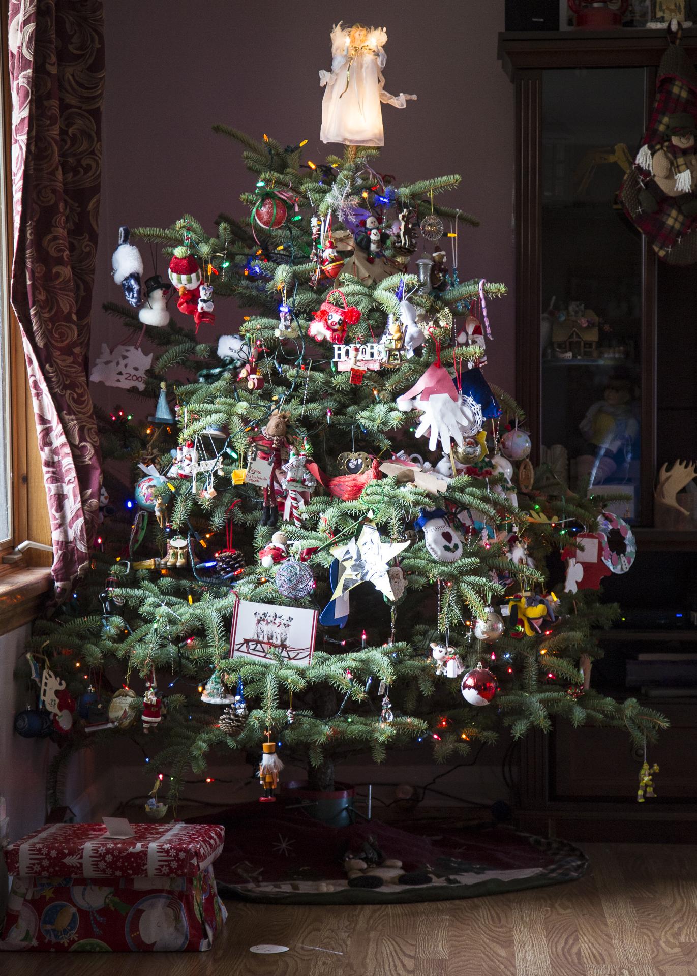 Christmas 2015-3.jpg