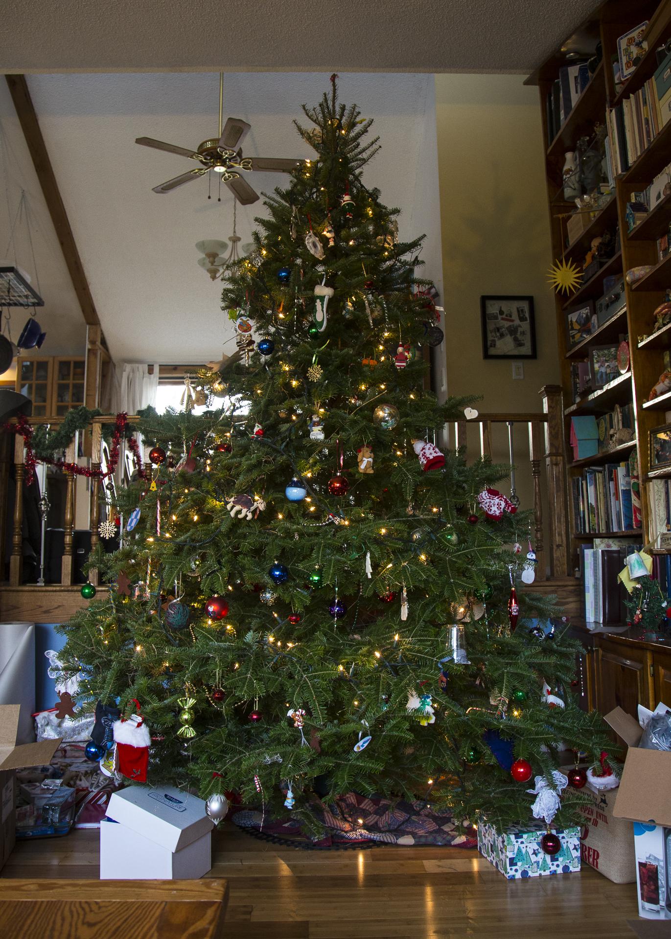 Christmas 2015-17.jpg