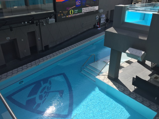There is even a pool that you can lounge in.