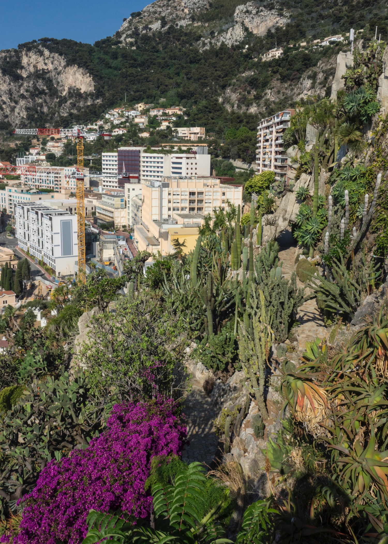 Most of the gardens are built into the steep cliff face, with amazing view out over the city and the ocean
