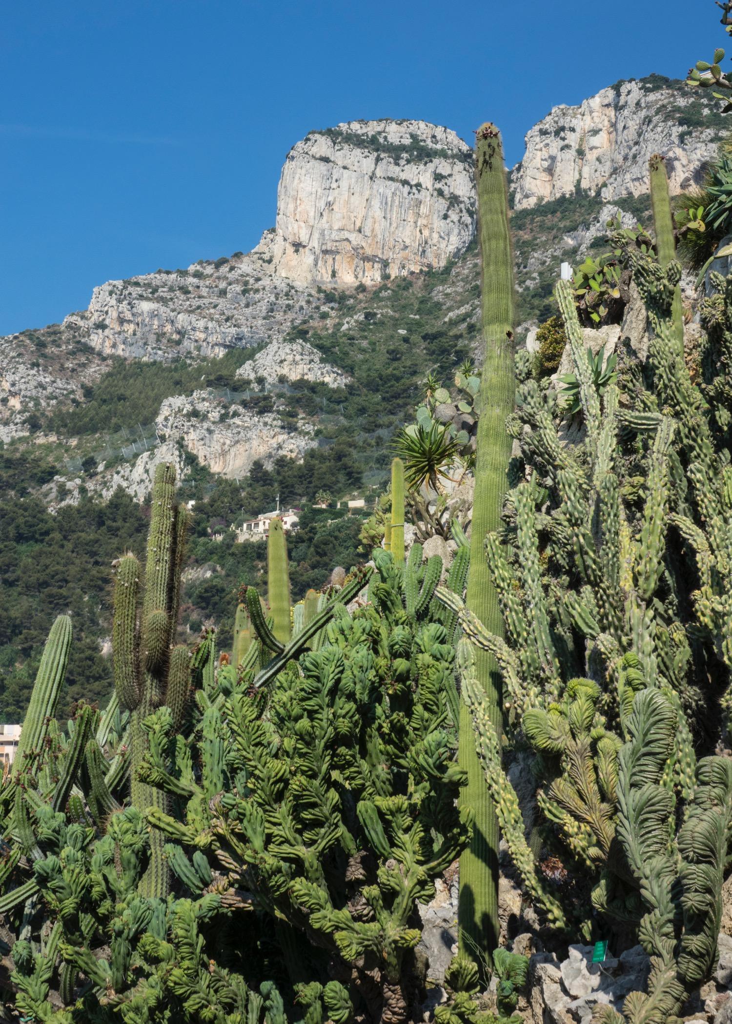 Nice and Monaco - 9.jpg