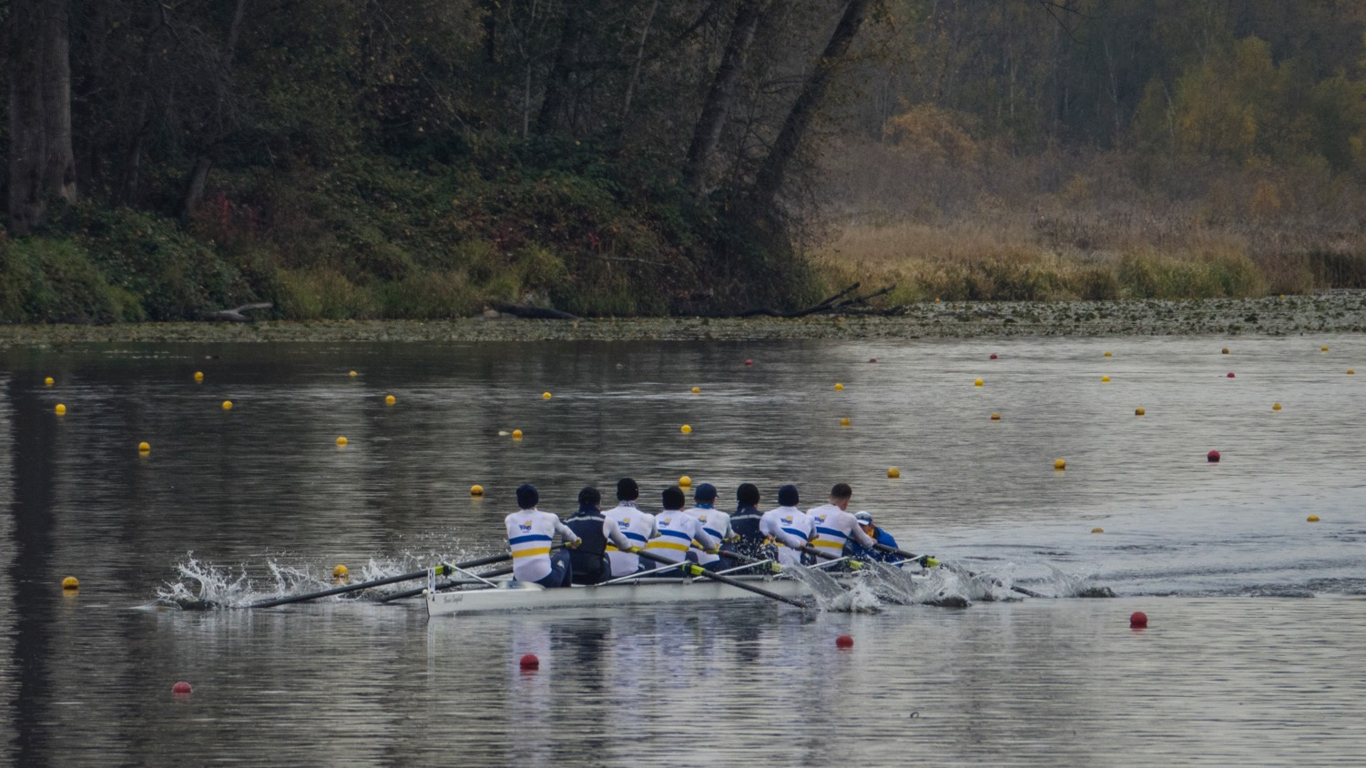 Alex's first race was the Men's 8s time trial. This was the first boat to come through, from UBC.