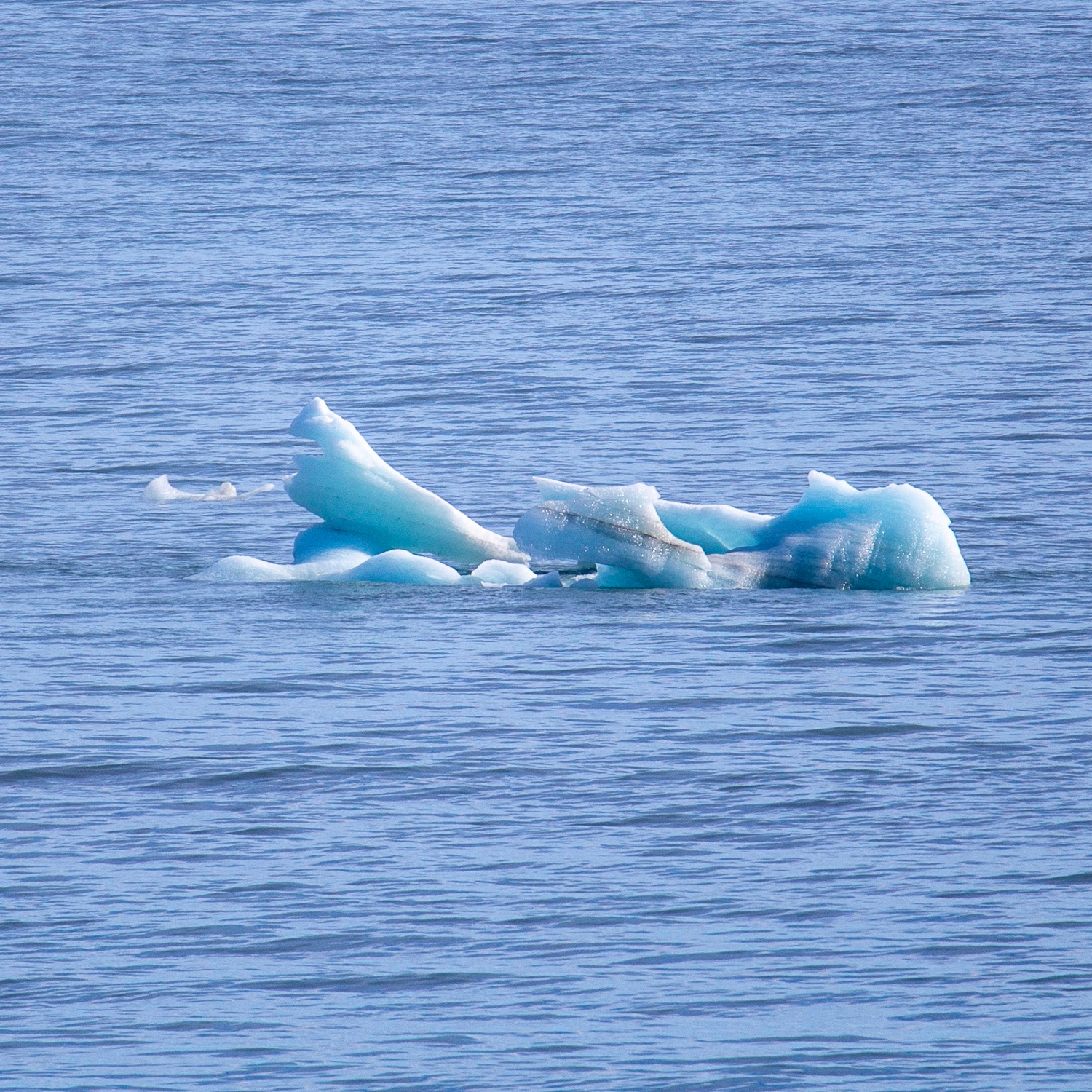 One of the first interesting pieces of ice, floating by...
