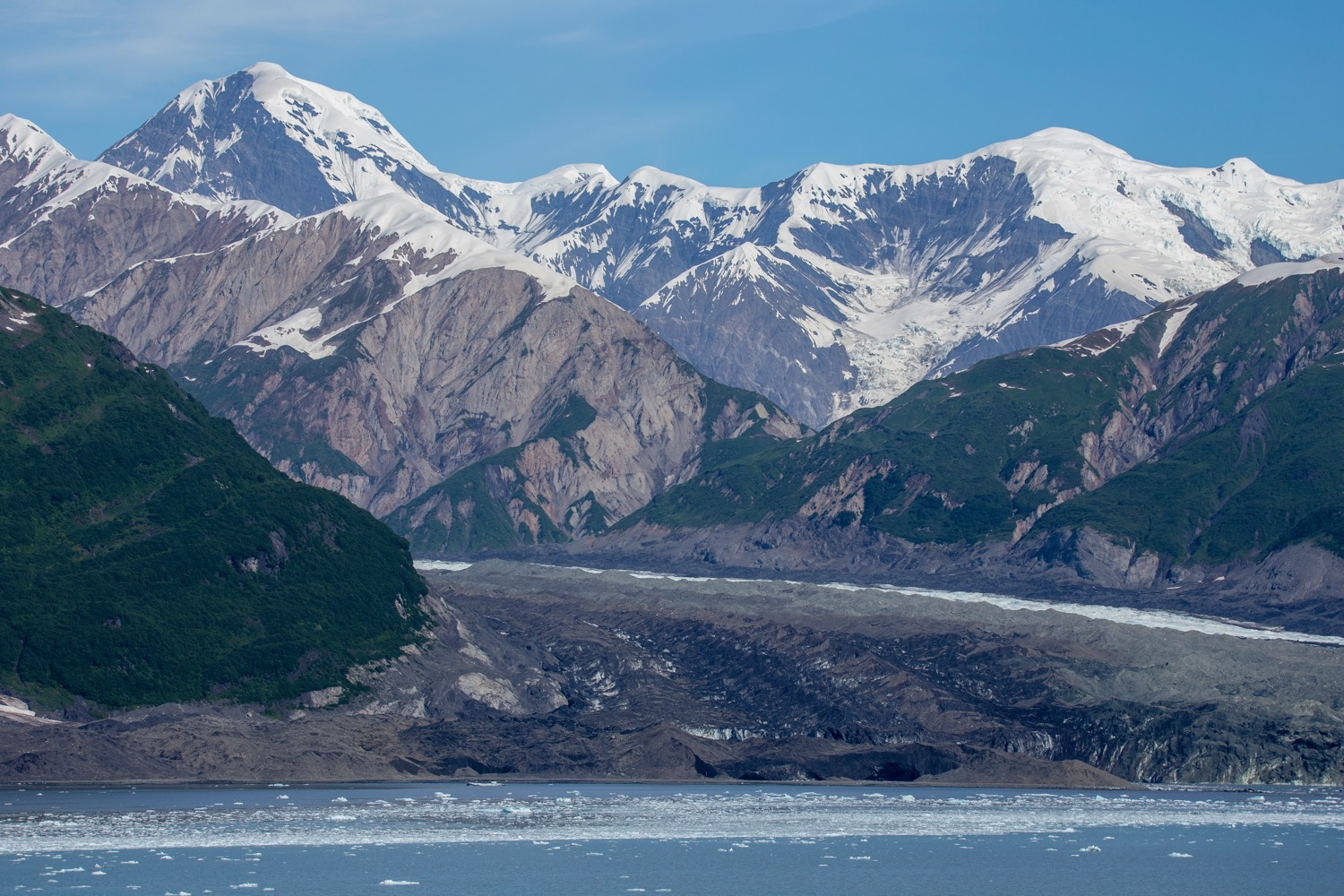 One of the other glaciers that has just about dissappeared.