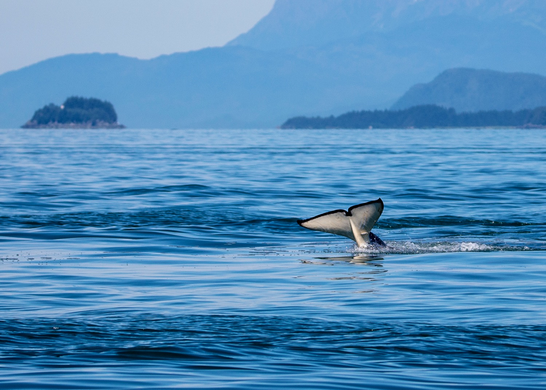 Juneau Alaska - 31.jpg