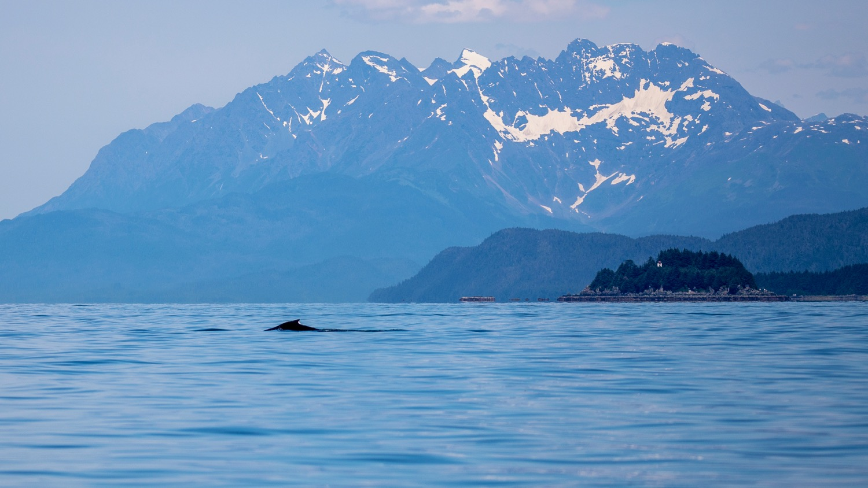 Juneau Alaska - 41.jpg