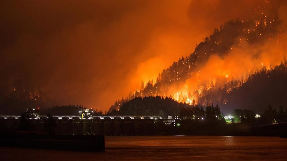 This photo is not mine obviously, but was one I found online. Horrible look at the fire.