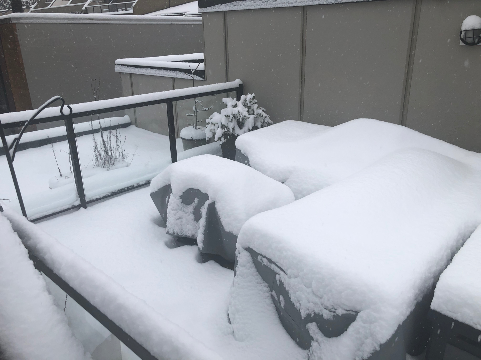 A pretty good sense for the snow we got. Accumulation on the roof deck.