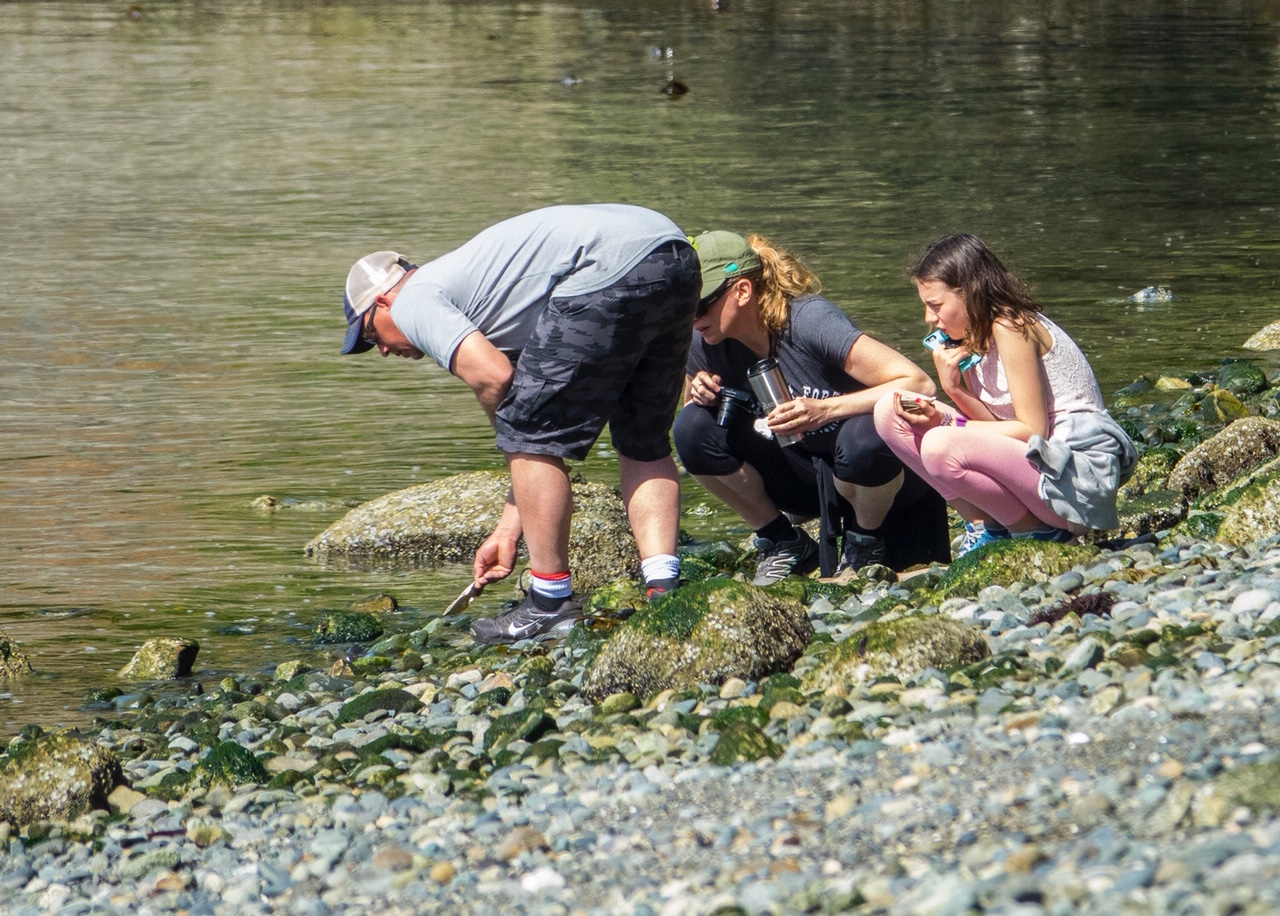 They were all very interested in what was in the water…