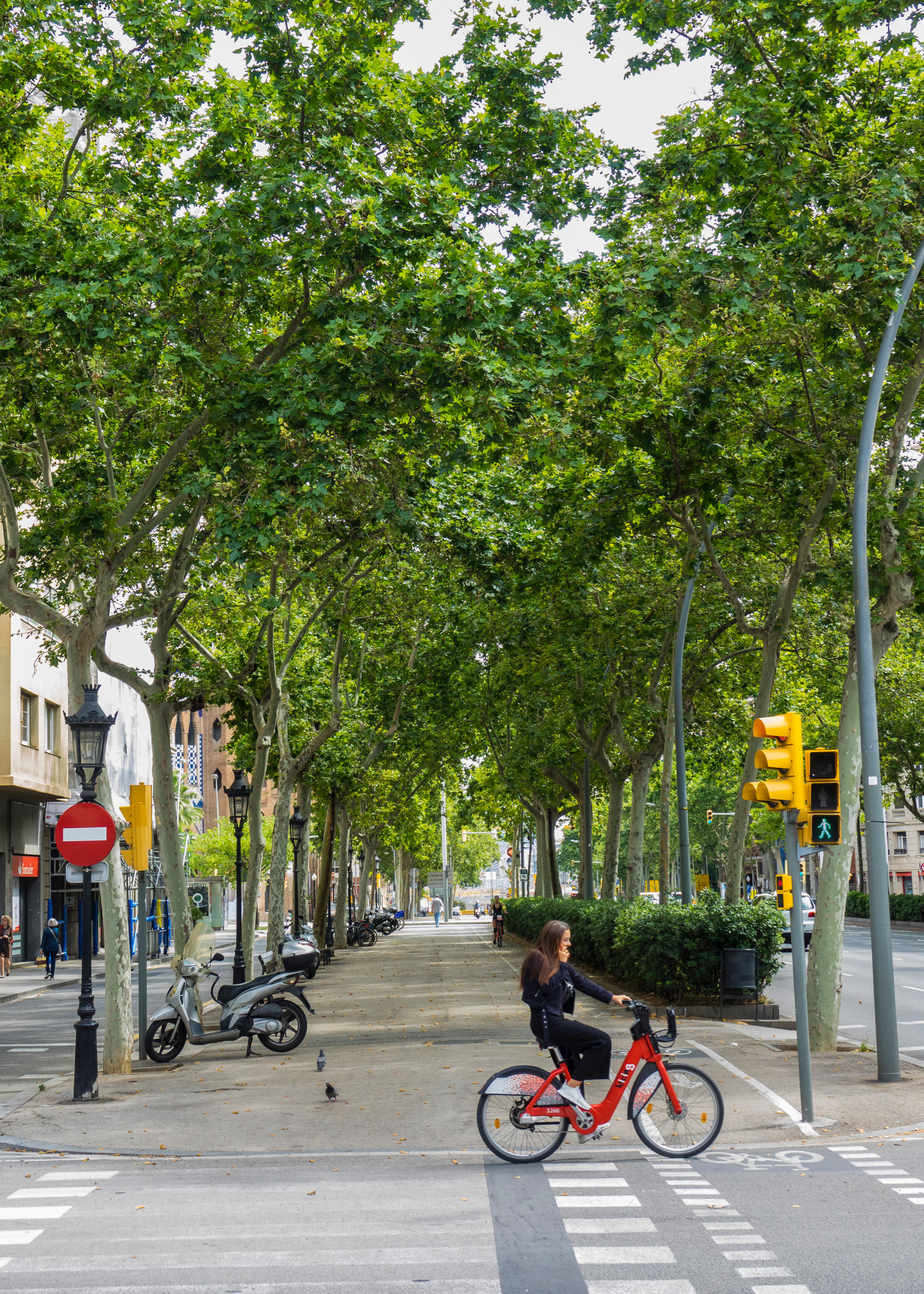 """I don't know why I like this photo so much, but it seems very """"Barcelona"""". People riding bikes, wide walking paths on calm city streets. It's such a great city."""