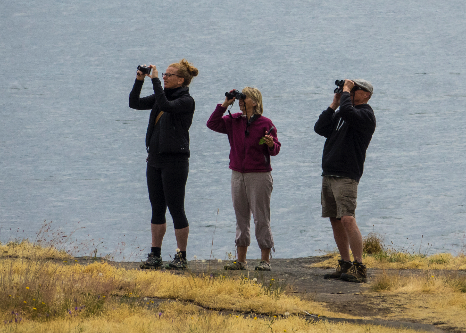 """The Birdwatchers"" - My favourite picture from the weekend - the birds don't stand a chance!"