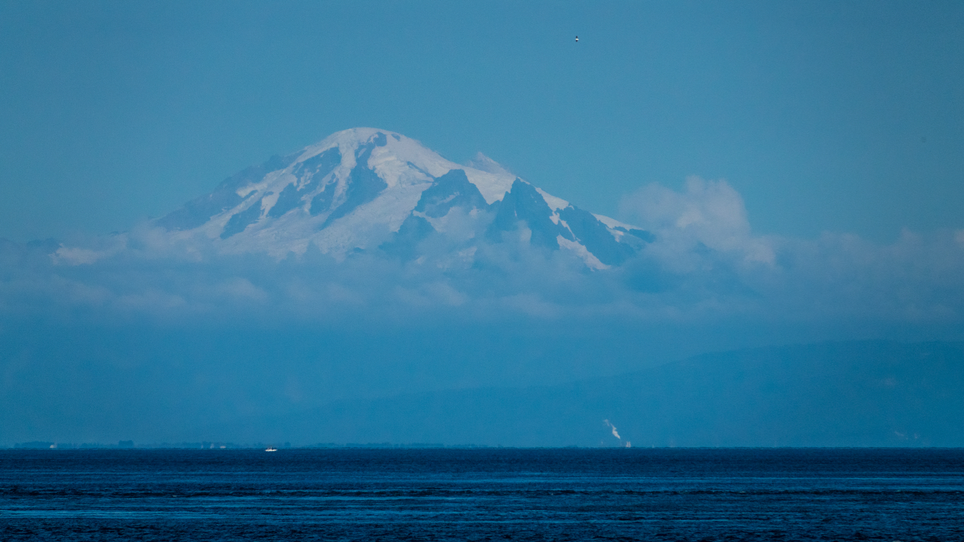 Mount Baker looked amazing in the late afternoon sunshine.