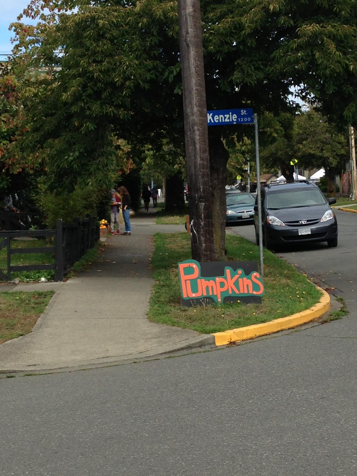 If you look close, you can see a few ladies checking out the pumpkins halfway up the block :)
