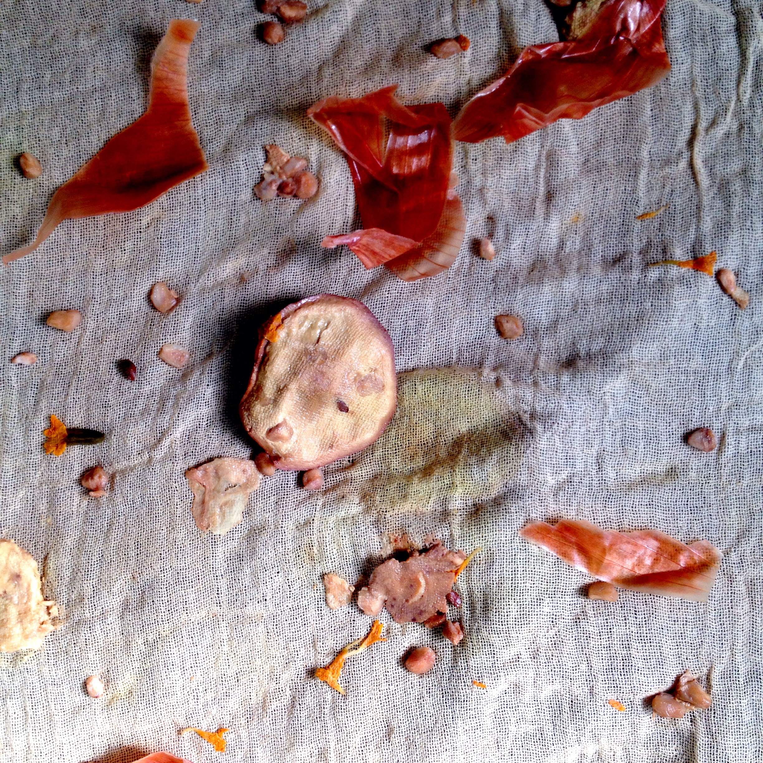 Cotton/linen gauze with yellow onion skins, pomegranate rind pieces, pomegranate arils (seeds), and marigold petals