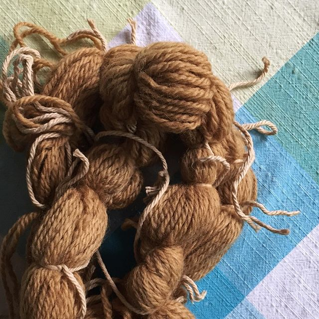 Last weekend's basil dyed wool revisited - I added alum to the leftover dyebath along with another branch of basil, put the skein of yarn back in and brought the pot up to a boil, then turned off the heat and let it cool overnight with the lid on. Second photo is the before. . #YearOfMaking2019 #BotanicalDye #PlantDyedYarn