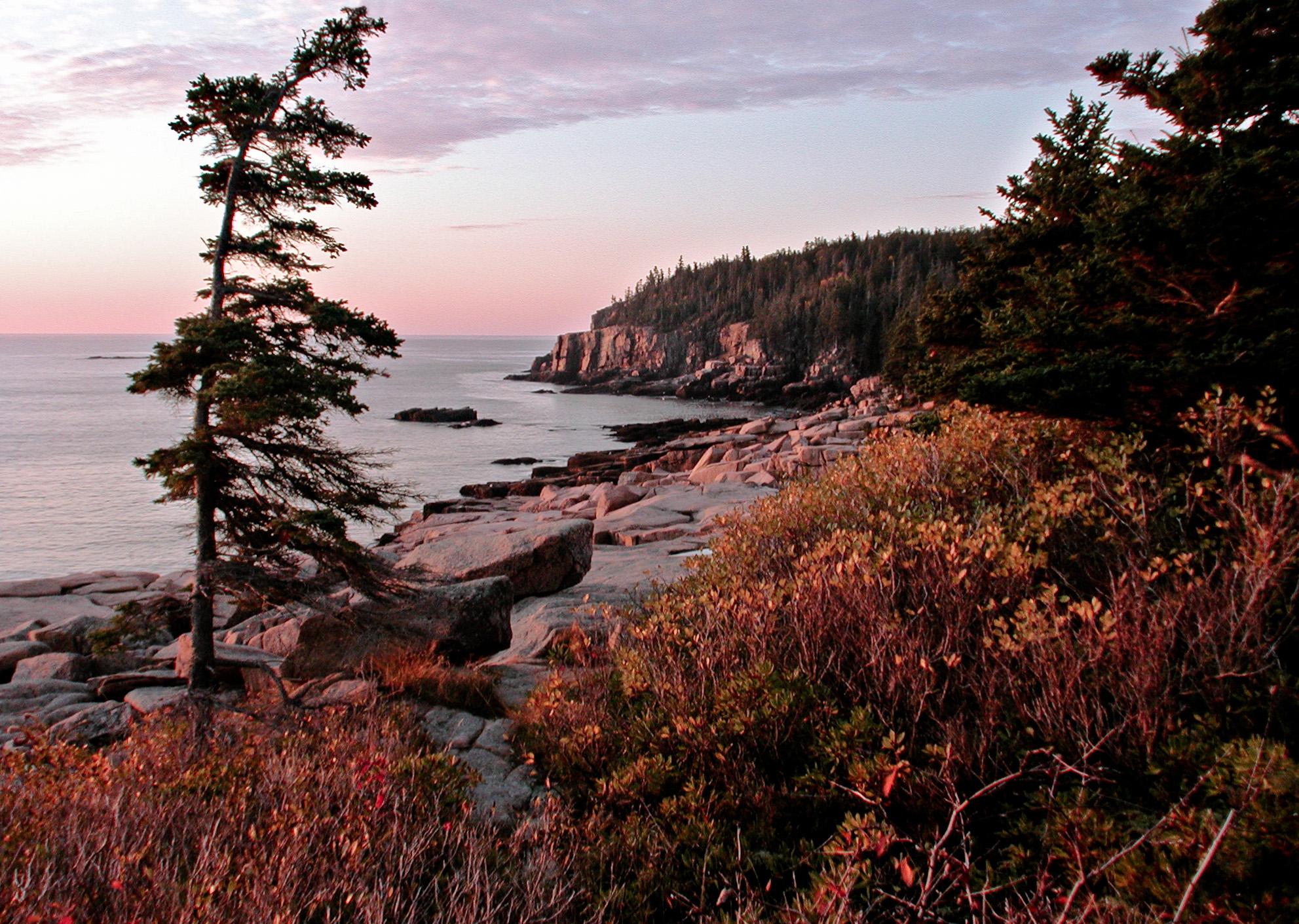 Otter Cliff 2