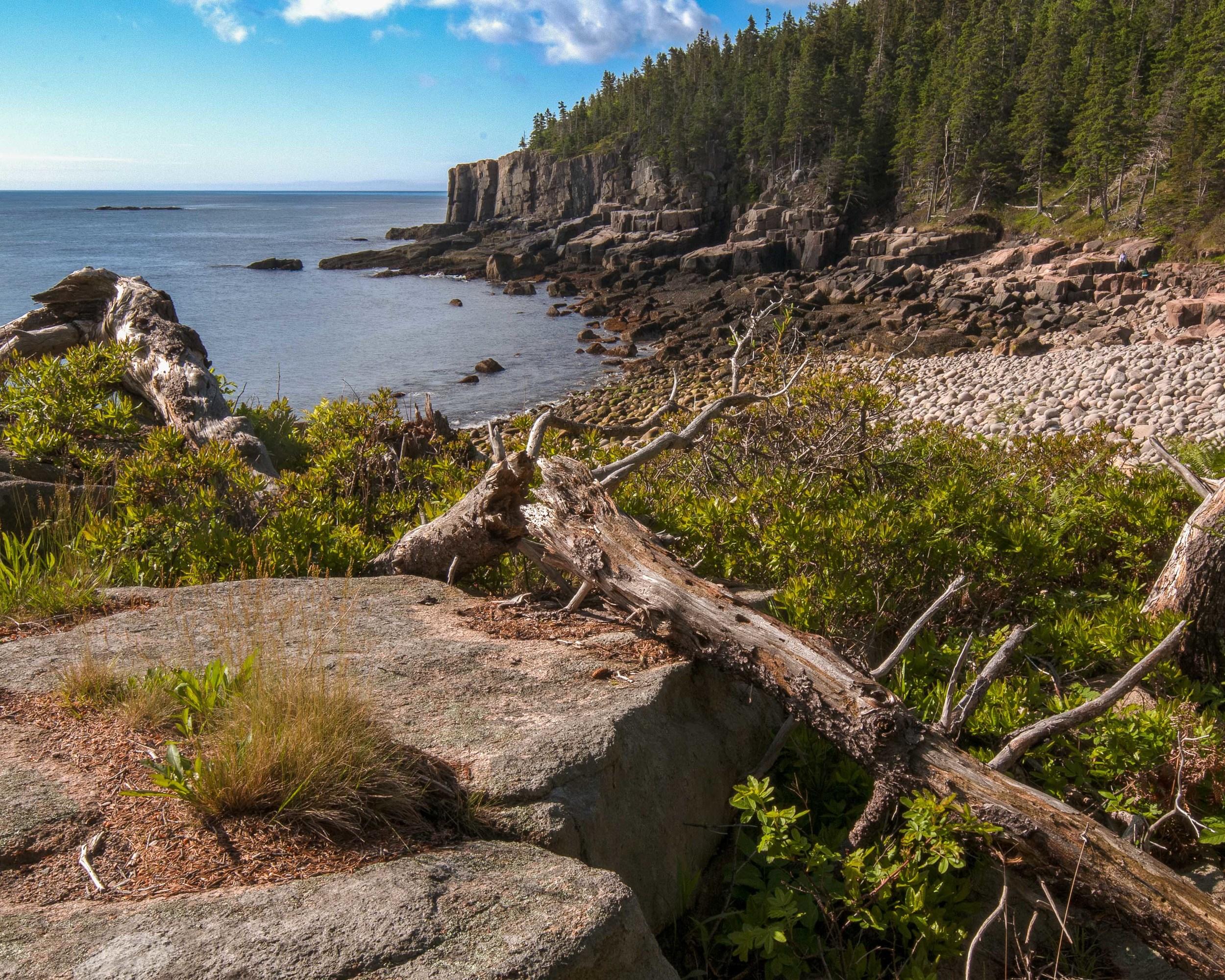 Otter Cliff 4