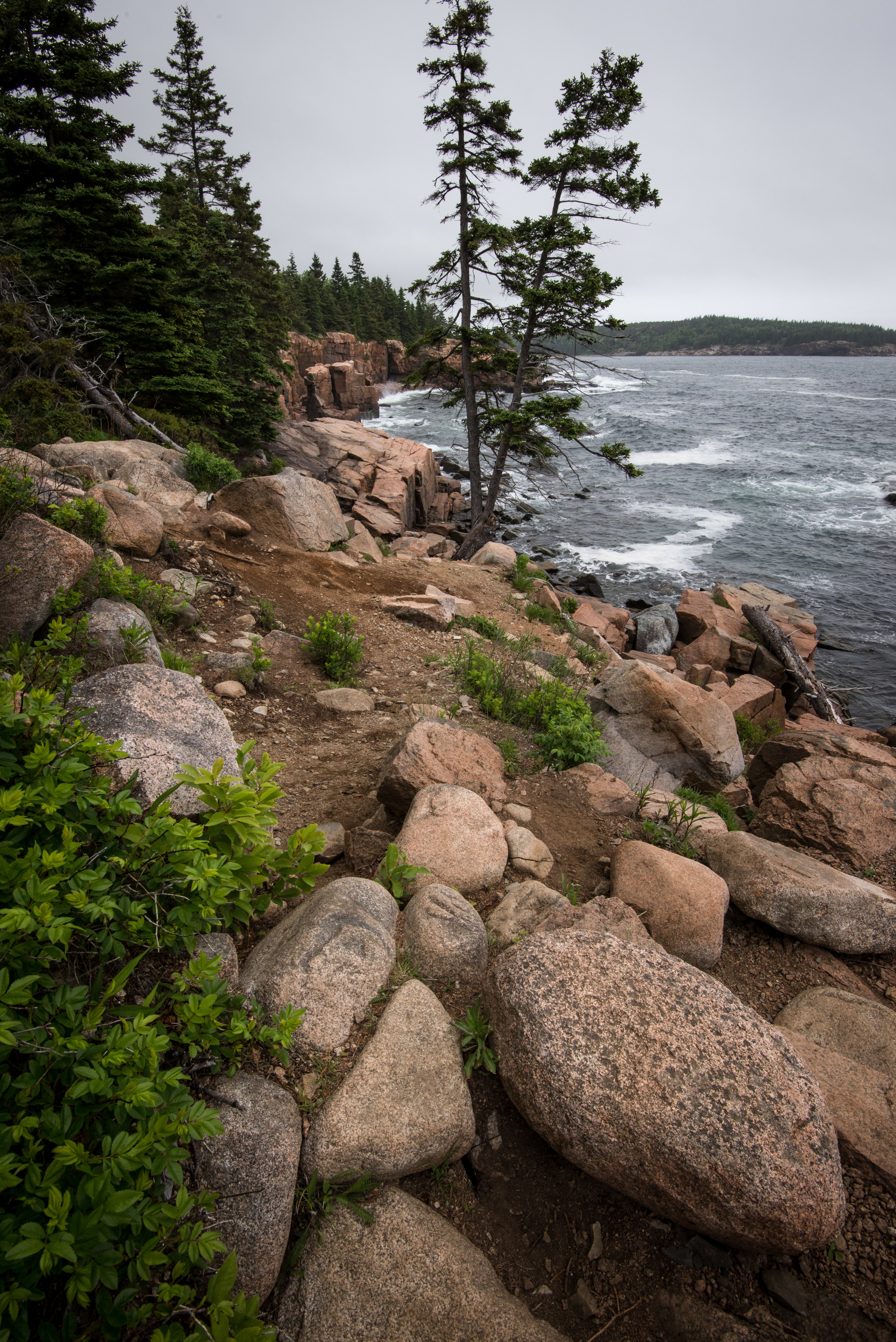 Trail by Thunder Hole