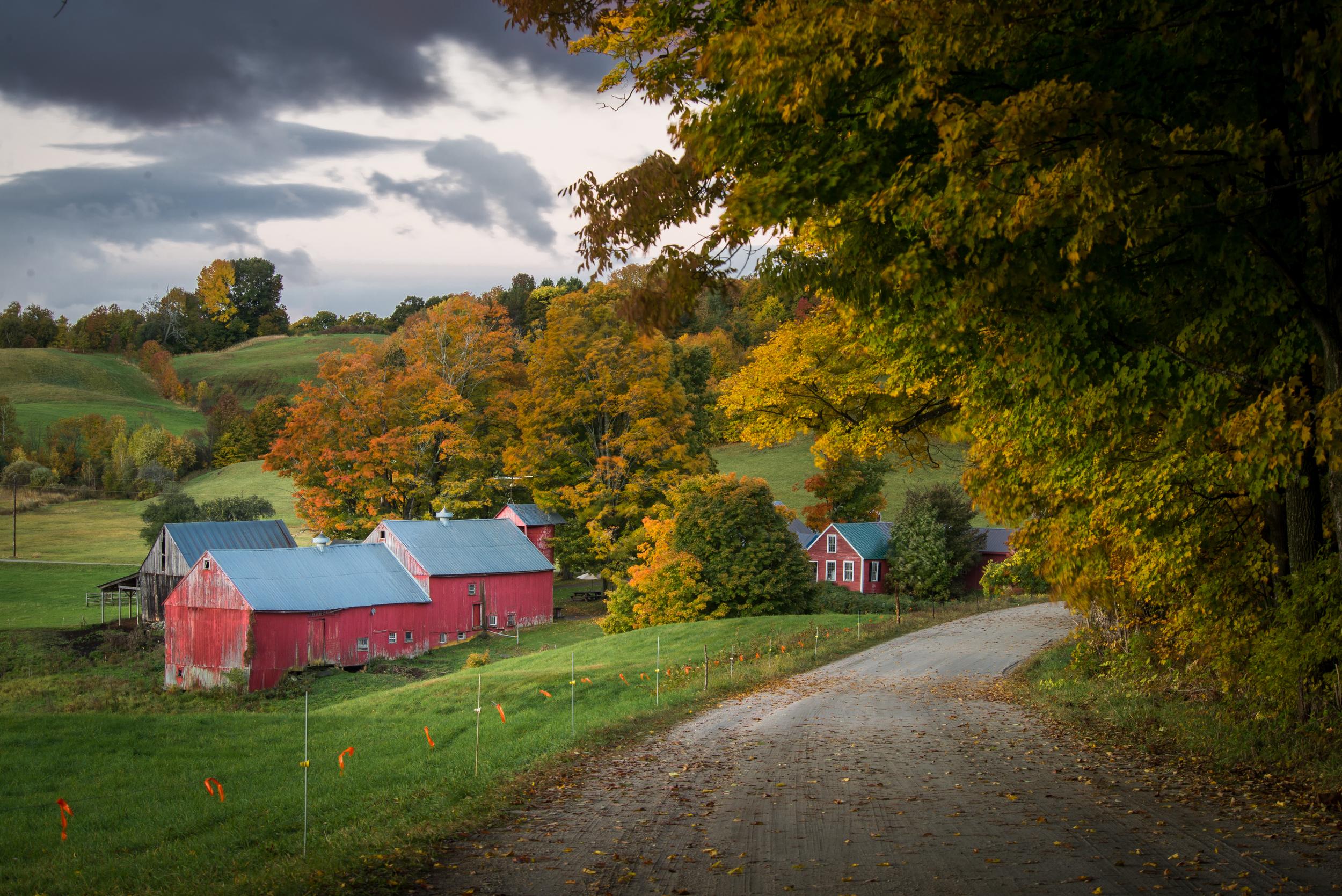 Vermont Farm in Autumn - 1