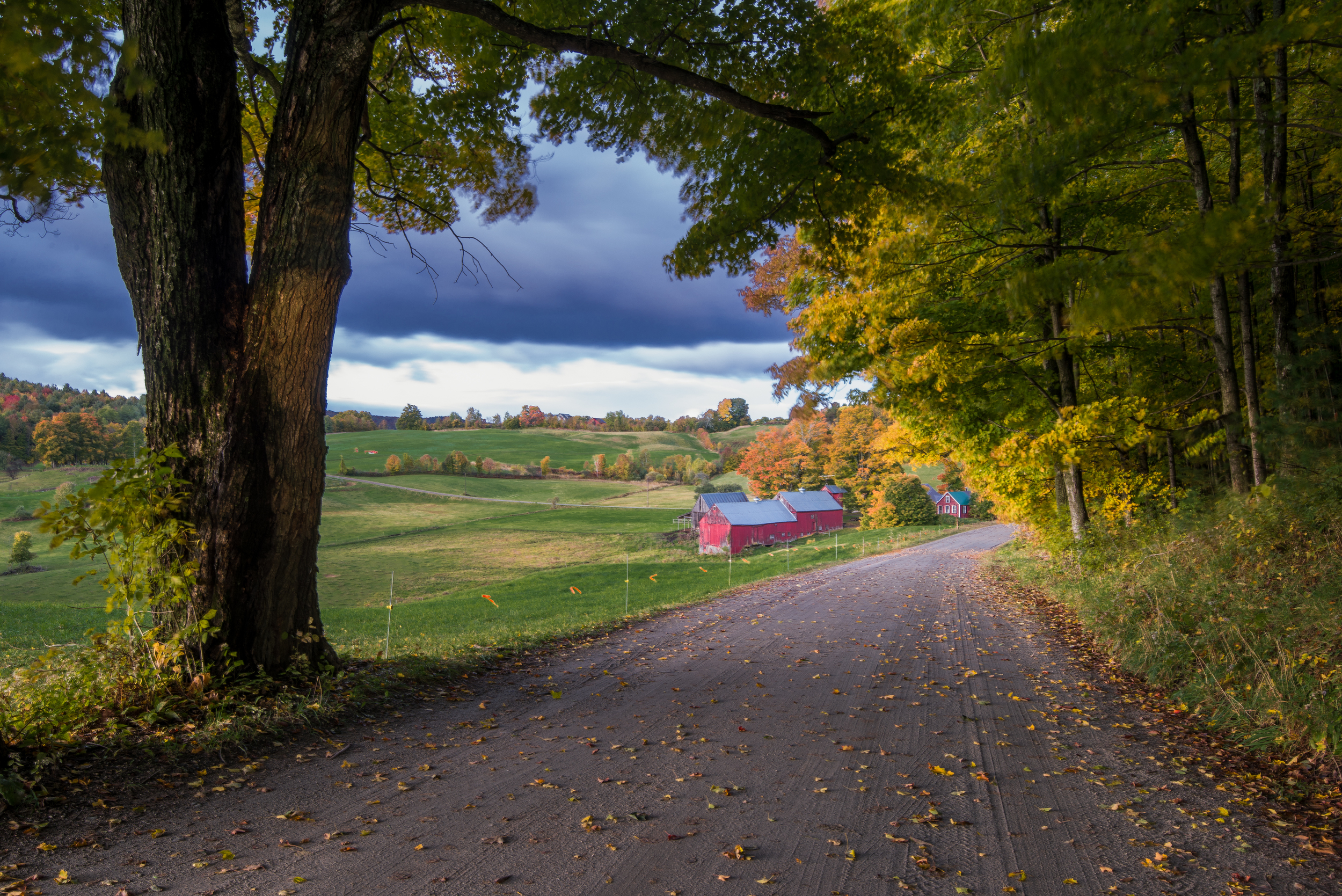 Vermont Farm in Autumn - 2