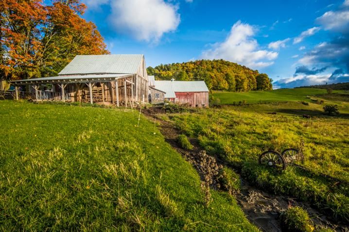 Vermont Farm in Autumn - 3