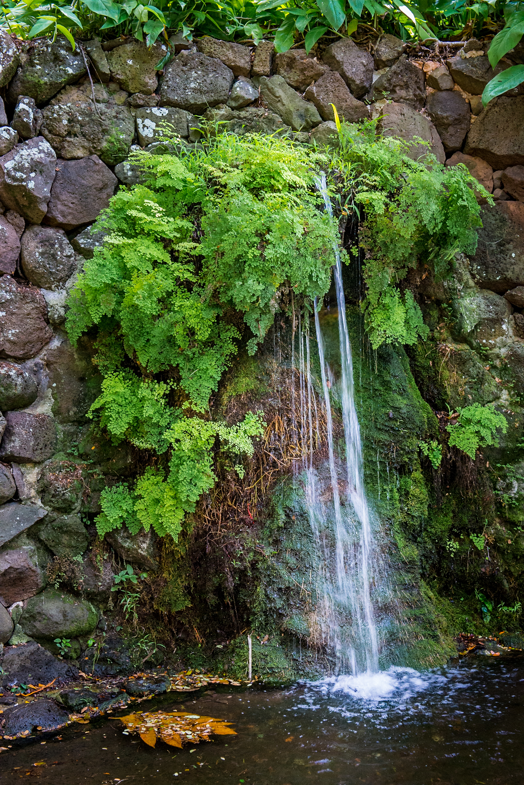 Trickling Waterfall 1