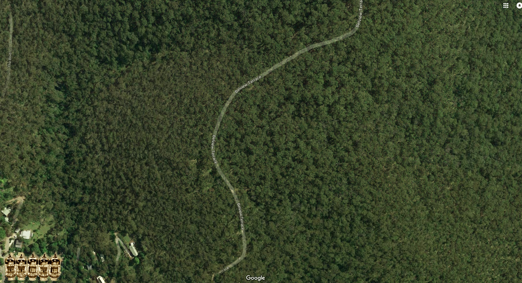 Forest@ToKwerX.jpg