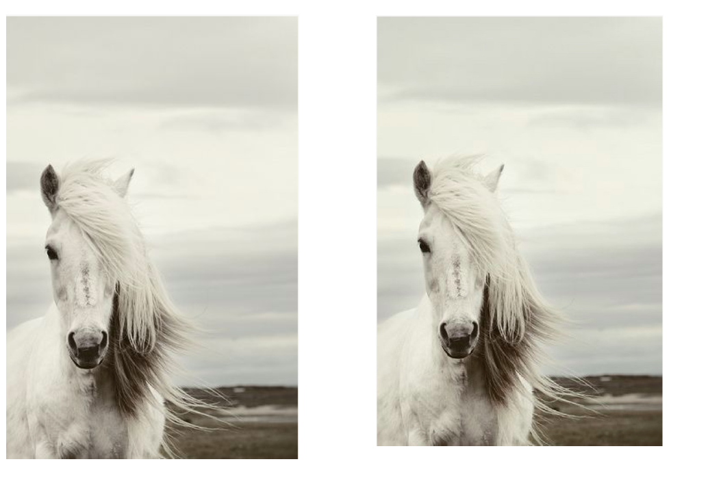 Squaready example L: Before R: After- ratio in tact with a lovely white border (artist unknown)