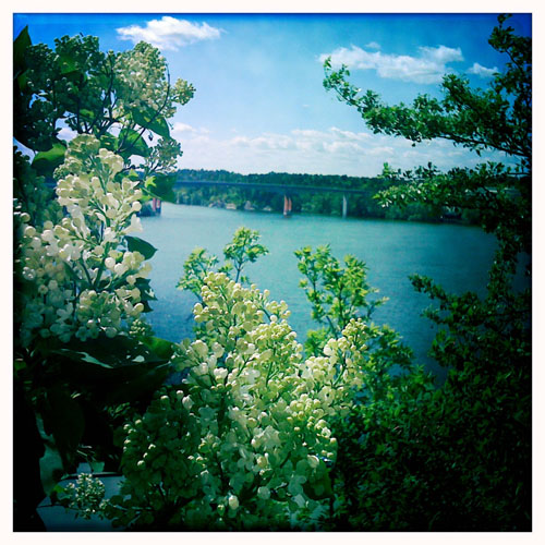 iPhone photography: the lake in June