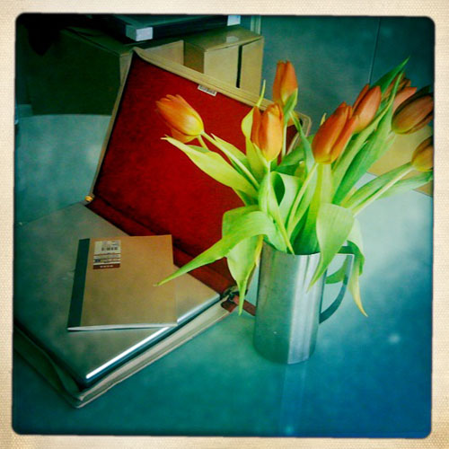 iPhone photography: Laptop and tulips