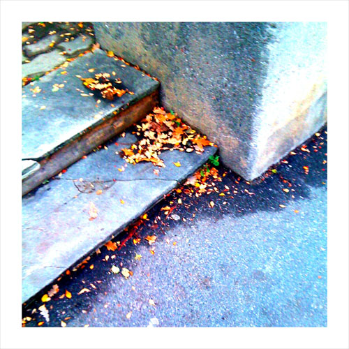 iPhone photography: Stairs with a scattering of autumn leaves.