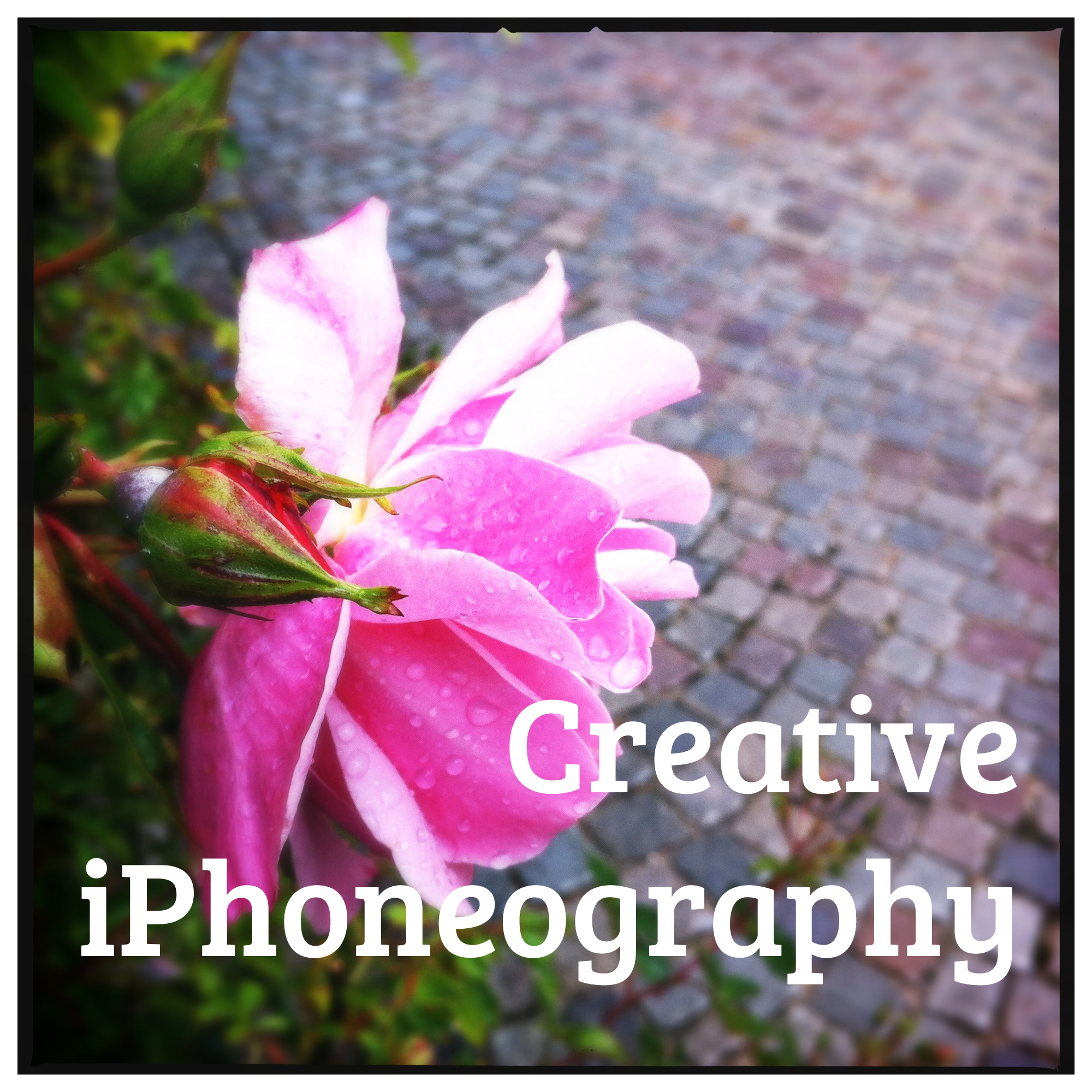 Creative iPhoneography Course