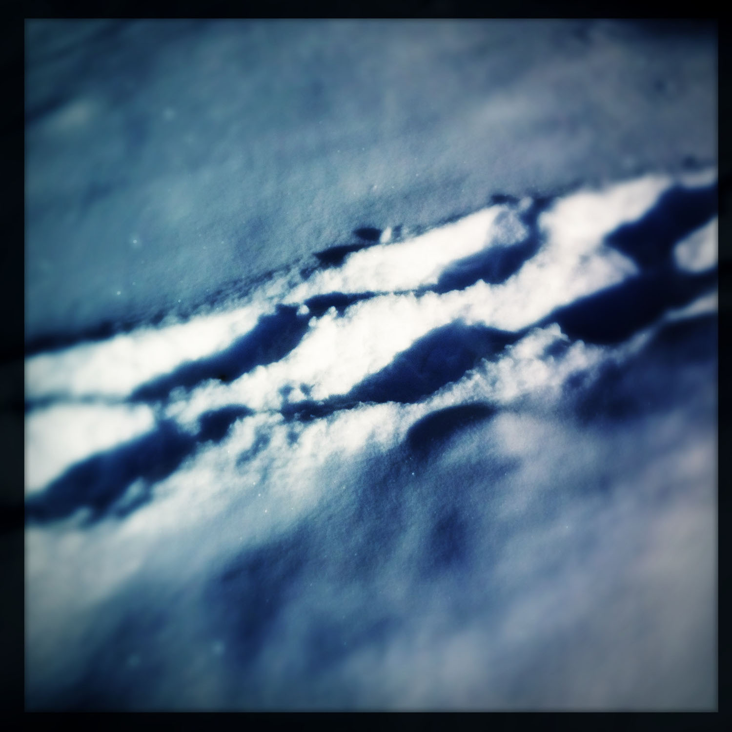 mobile photography: footsteps in snow