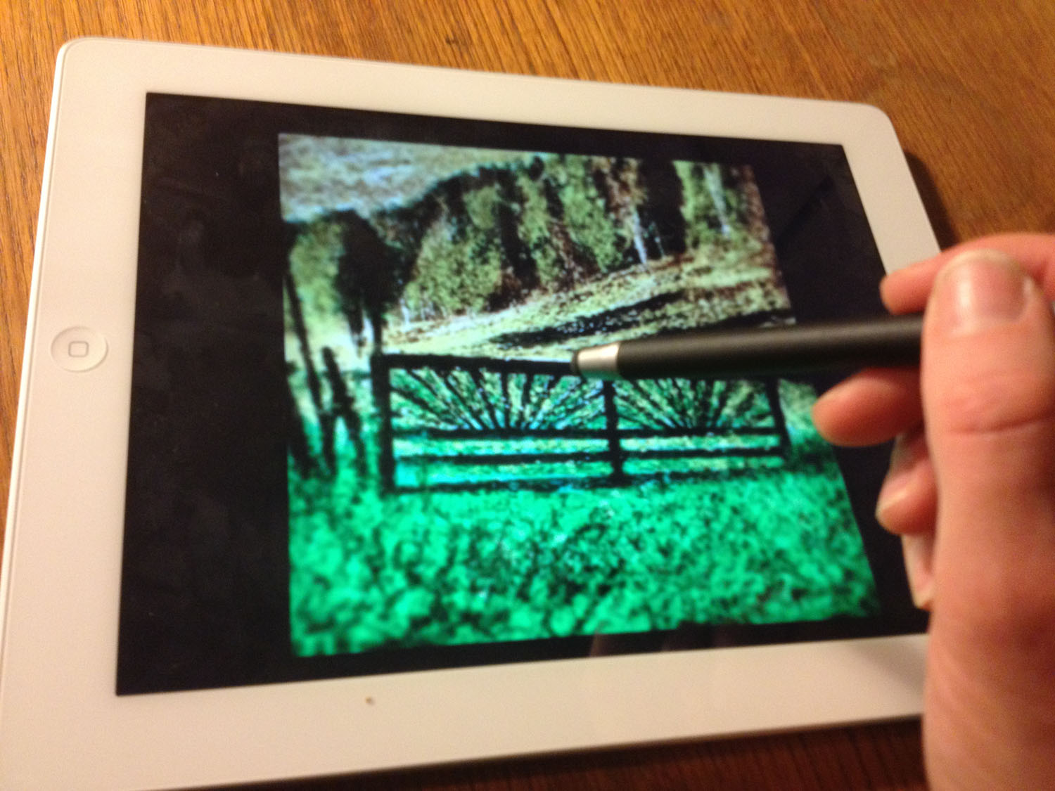Using the iPad to create mobile art and photography. Photo: Anne Vilemsons.