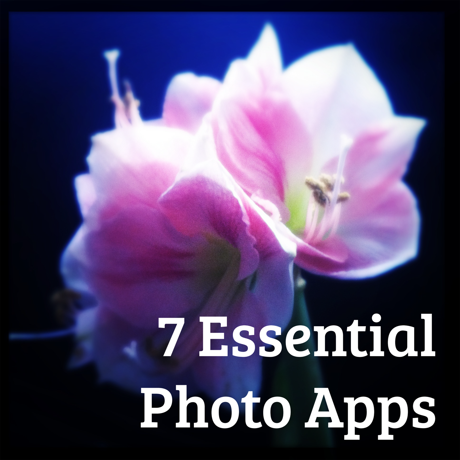 essential-photo-apps.png
