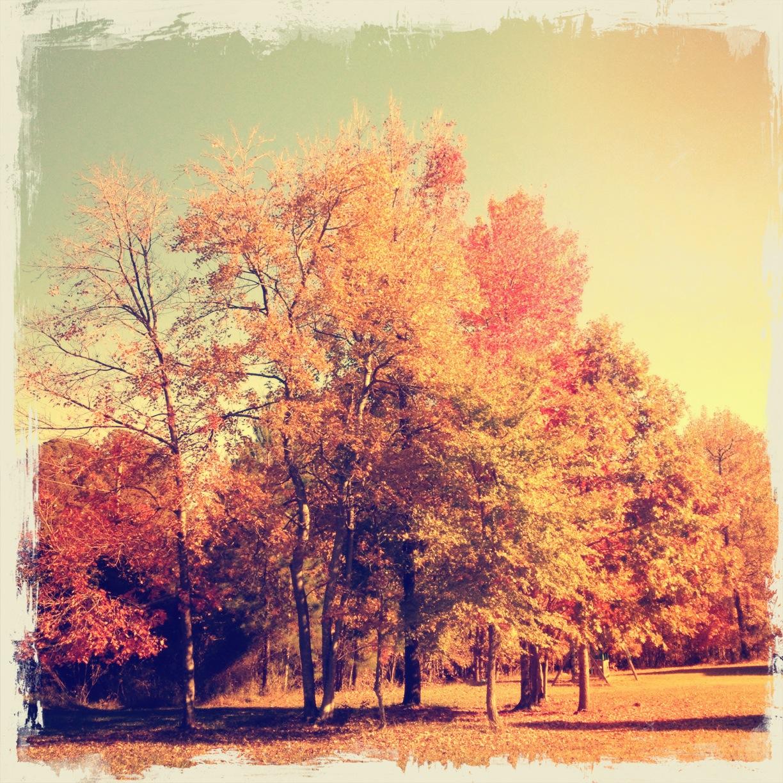 "Post-Process - Vintique ""Warm Day"" & Frame 21"