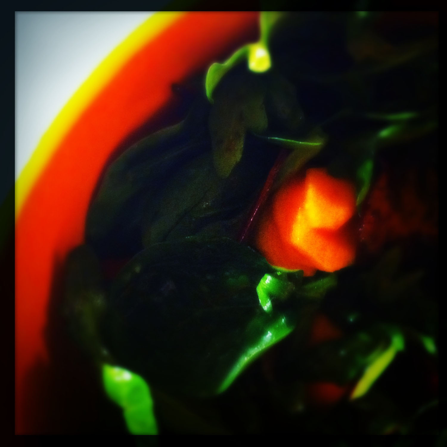 iPhoneography: glowing carrot in salad