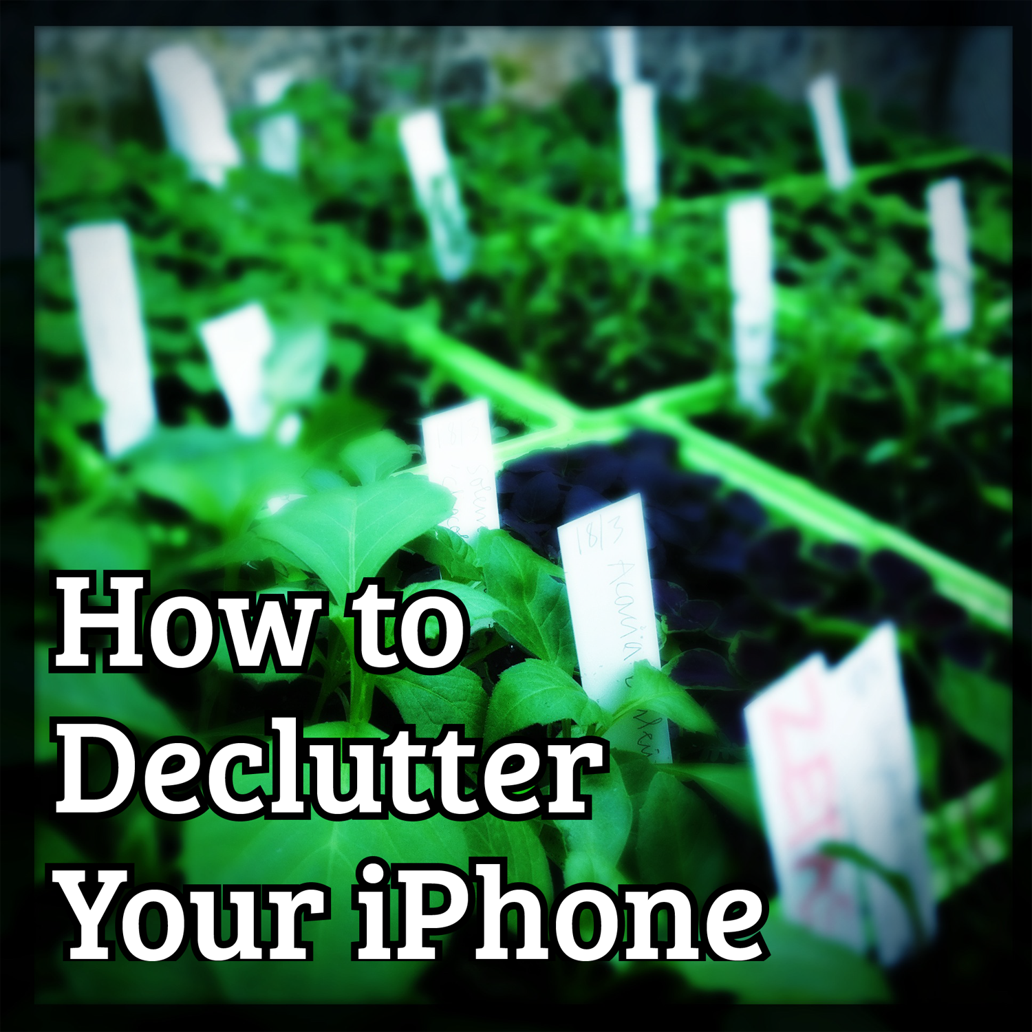 How to declutter you iPhone, iPod and iPad