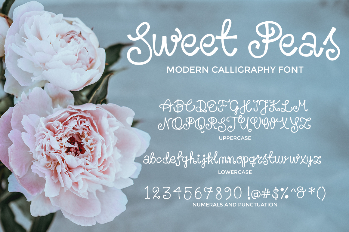 sweet-peas-modern-calligraphy-font-characters.png