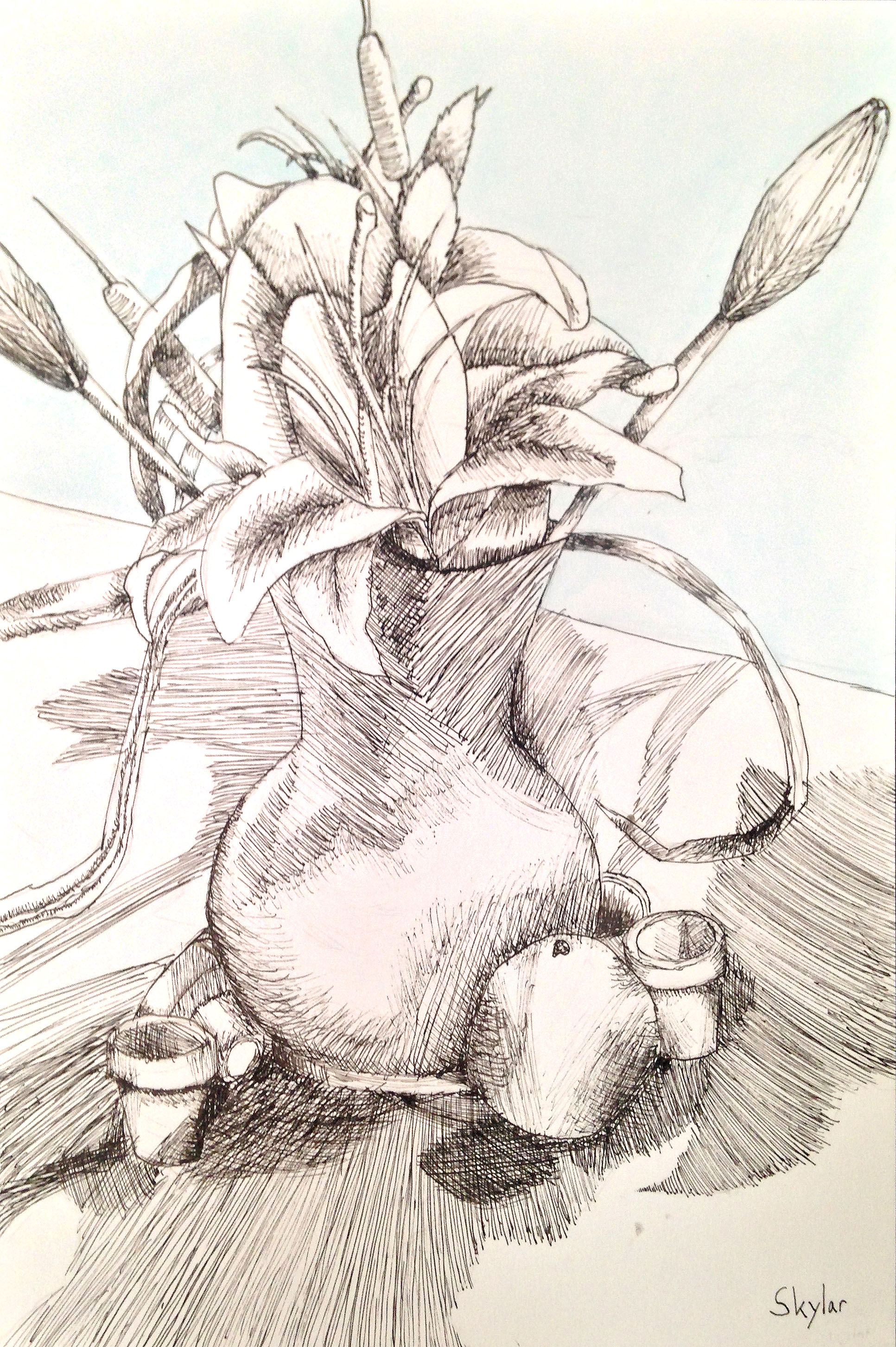 Ink Drawing of of Still Life
