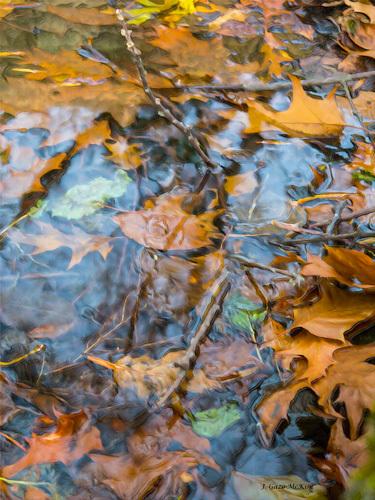Breaking the Surface Digital Painting by J. Gazo-McKim ©2013