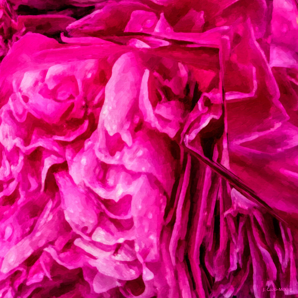 Ruffled Rose by J. Gazo-McKim ©2014