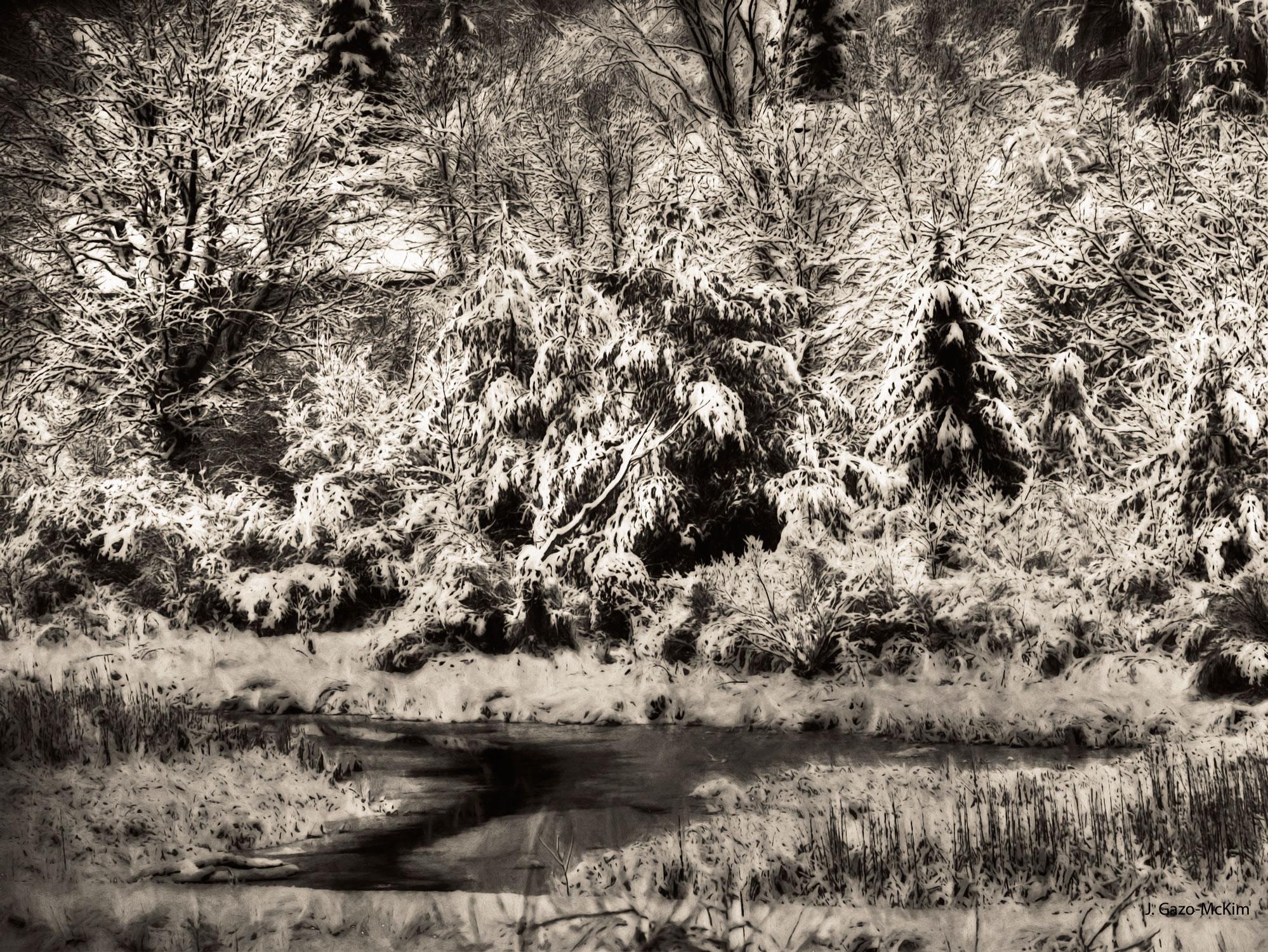 Winter's-Sepia-Grip-1500px.jpg