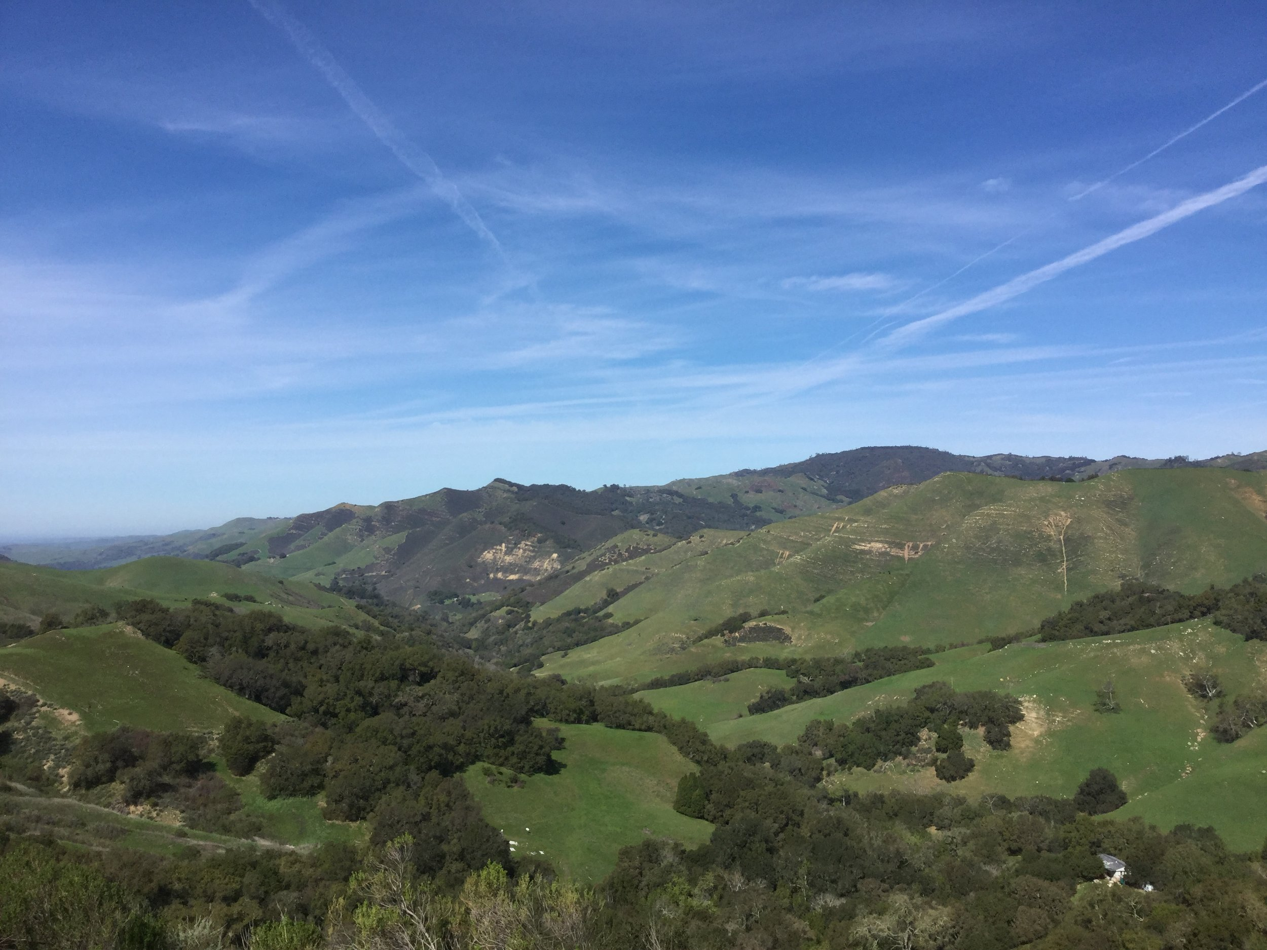 Beautiful rolling hills in California